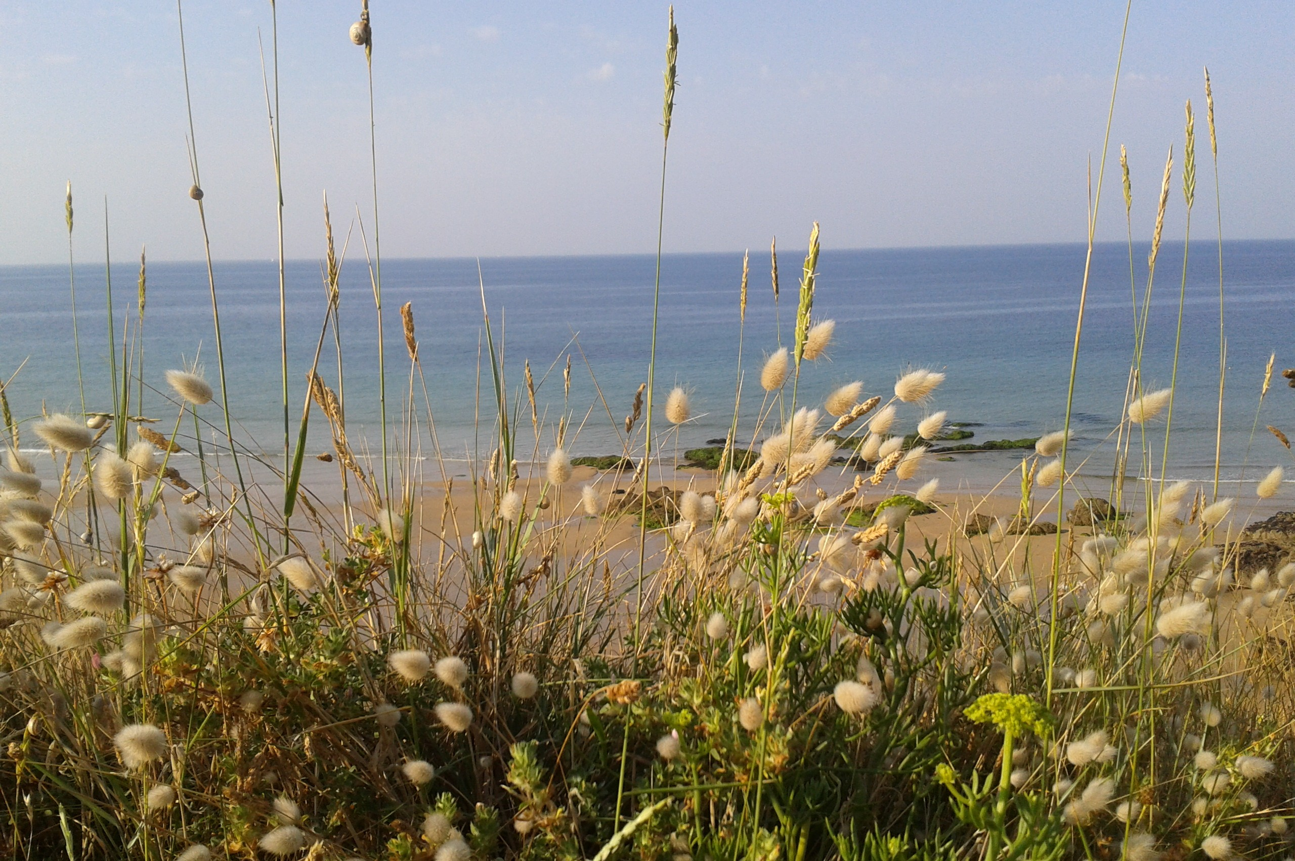 Naturôme en vacances jusqu'au 17 août