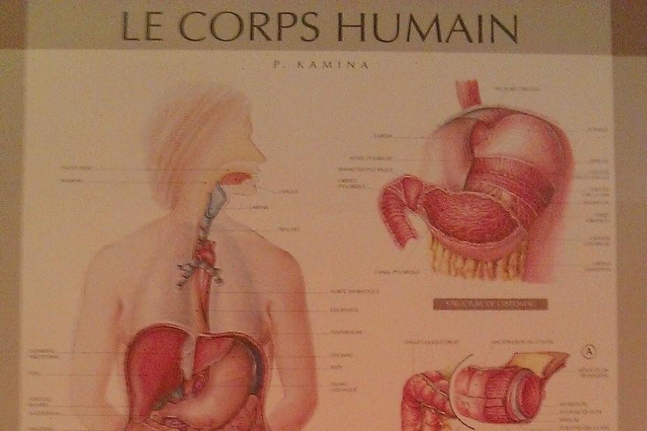 Hydrothérapie du colon chez Naturôme