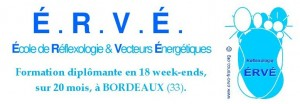 Formation réflexologie E.R.V.E