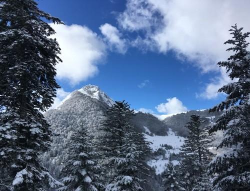 Le ski tout en vitalité avec la naturopathie