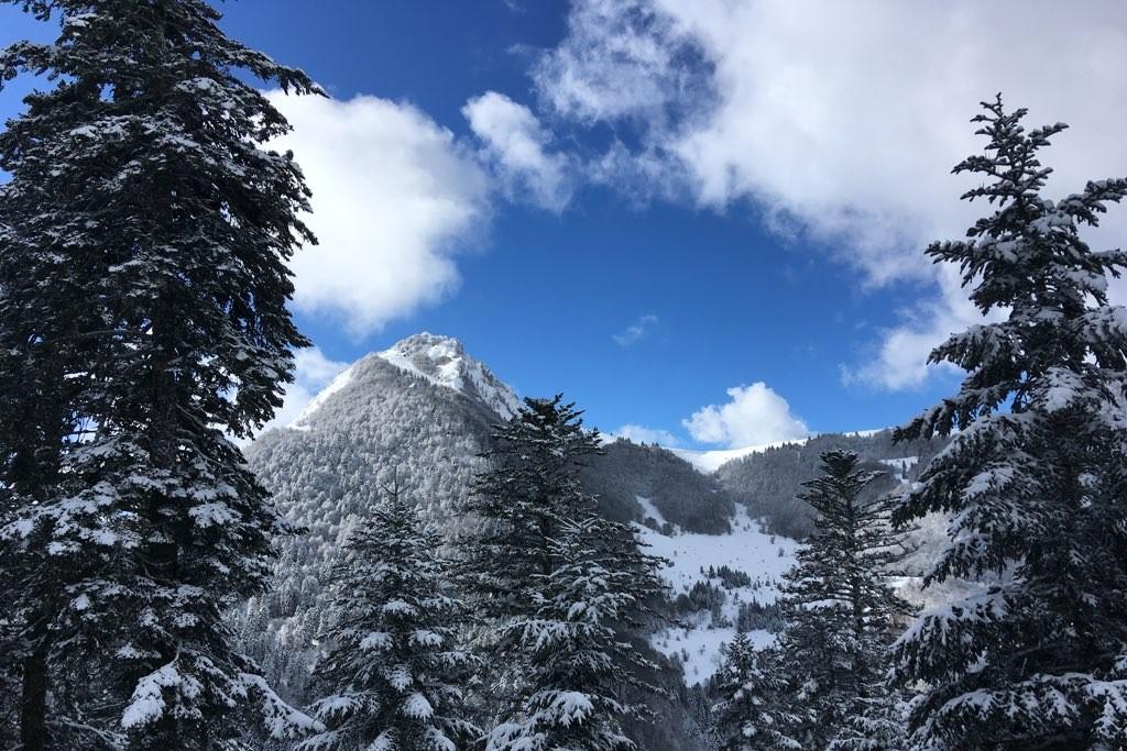 Ski et vitalité